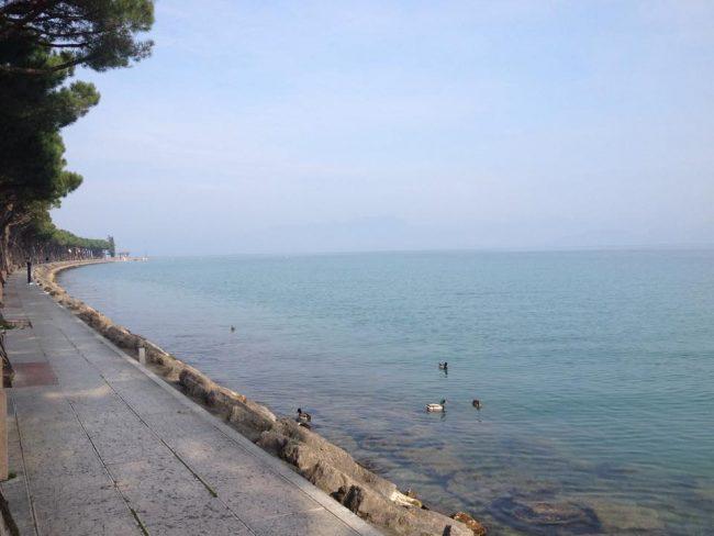 Pesca sul Lago di Garda in arrivo regole uniche per Lombardia, Veneto e Trentino