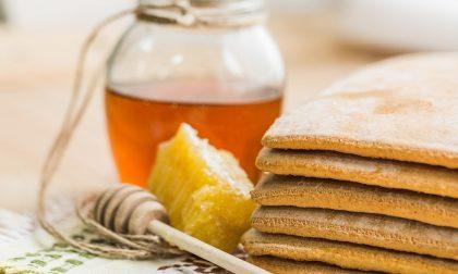 Produzione miele in calo a Brescia lavoro a rischio per apicoltori