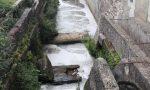 Ennesimo sversamento a Castenedolo: schiuma bianca nella roggia Razzica