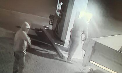 Doppio furto nei distributori di Cazzago e Travagliato IL VIDEO