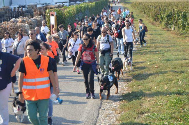Più di 50 cani e quasi un centinaio di persone al pomeriggio benefico Oipa