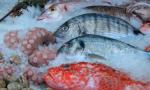 Pesce scaduto: maxi sequestro in provincia di Bergamo e Brescia