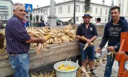 Festa dell'agricoltura in piazza a Coccaglio VIDEO