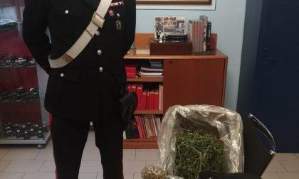 Spacciatore e cliente beccati dai carabinieri a Cazzago