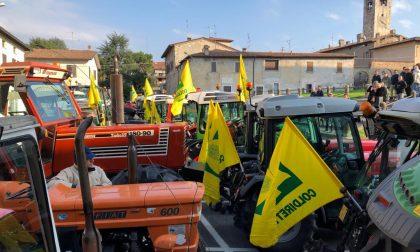 Trattori in piazza a Erbusco, Villa e Zocco