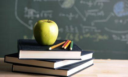 Una raccolta firme per l'educazione alla cittadinanza