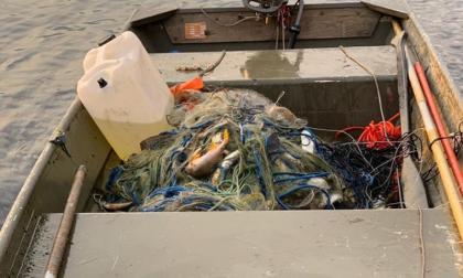Maxi sequestro di reti abusive sul lago d'Iseo