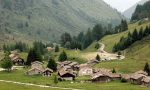 Ville e Saloni con i fondi per l'agricoltura, truffe per più di 200mila euro