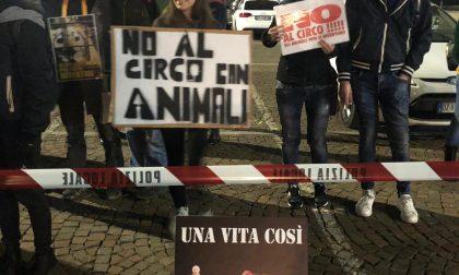 No al circo e allo sfruttamento animale: a Palazzolo la manifestazione