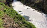 Schiuma bianca nella roggia Luzzaga