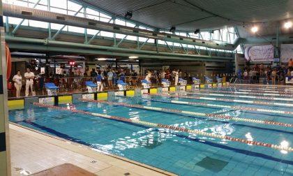 Settimo Trofeo Vittoria Alata Nuoto nel week end a Brescia