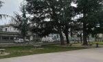 Vento forte a Manerbio, piegato un albero alle elementari