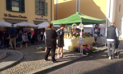 Mercatini in piazza: grande festa a Palazzolo