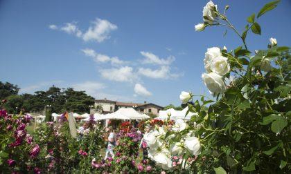 Franciacorta in fiore: al via la 22esima edizione