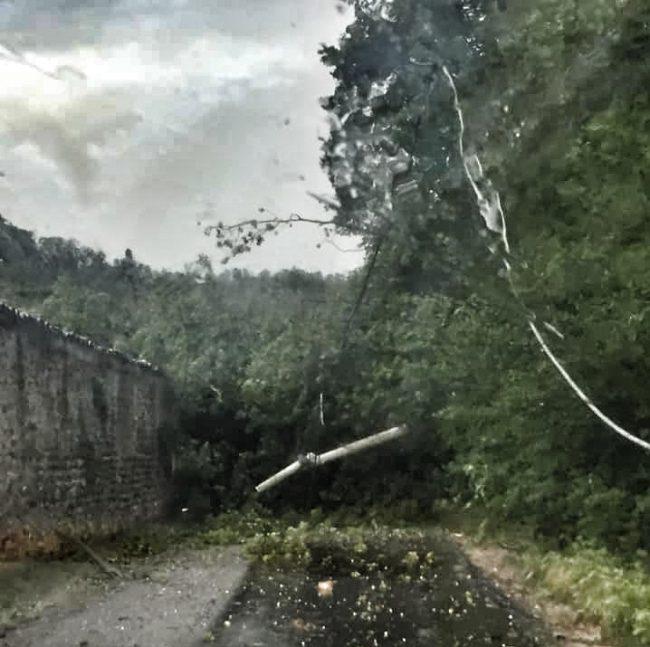 Ancora altri caduti a Castiglione, viabilità in difficoltà a causa di alberi che hanno bloccato alcune vie del centro storico e delle frazioni
