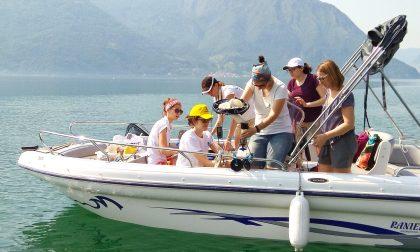 Goletta dei laghi: l'acqua del Sebino ha passato l'esame FOTO