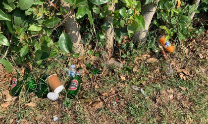 Domenica in spiaggia: rifiuti abbandonati sulla spiaggia di San Felice