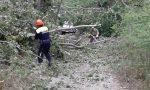 Crollano gli alberi attorno alla loro auto, le Gev salvano una famiglia