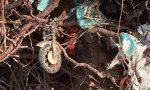 Si sradica un albero in via Donatori a Orzinuovi, dal sottosuolo emergono i rifiuti