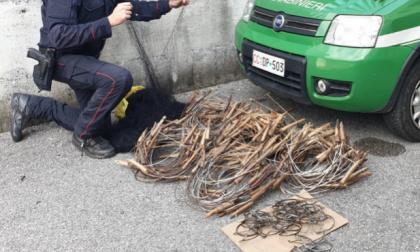 Bracconiere recidivo arrestato dai Carabinieri Forestali