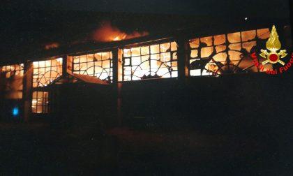 Capannone in fiamme, incendio nella notte a Montichiari