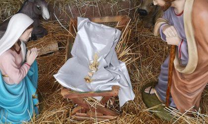 Identificati e denunciati i minorenni che hanno fatto a pezzi il Bambin Gesù
