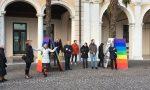 6mila Sardine Brescia e 6mila Sardine Lago di Garda e Salò: cosa stanno combinando?