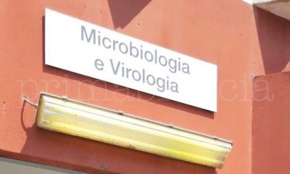 Brescia: isolata una variante di virus Sars-CoV-2