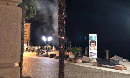 A fuoco le palme davanti a palazzo comunale a Salò