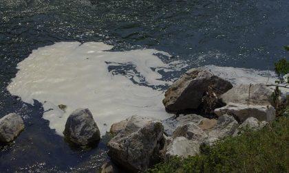 Fiume Chiese, nuovo allarme inquinamento tra Calcinatello e Montichiari