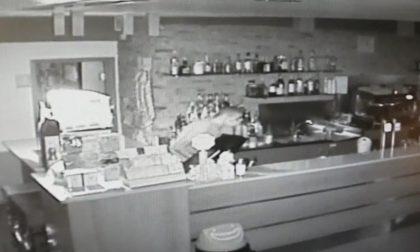 Raffica di furti a Palazzolo: preso di mira da un ladro in bicicletta anche un bar