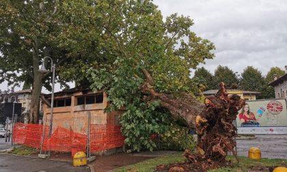 La furia del vento fa gravi danni a Iseo