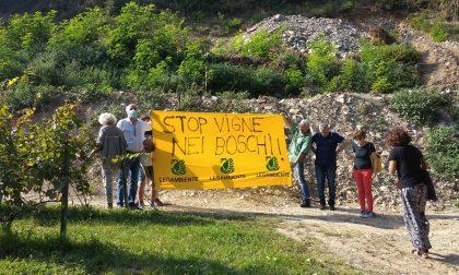 """Flash mob per fermare """"lo sfregio sul Monte Alto"""""""