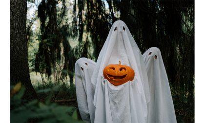 Costumi da Halloween per bambini, ecco come scegliere i migliori