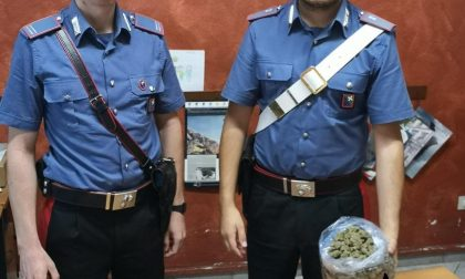 Due etti di marijuana in casa: arrestato 37enne