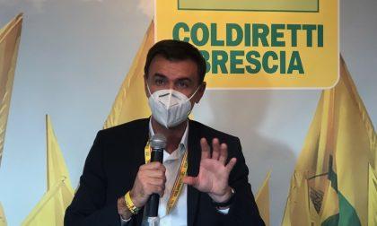 Presentato da Coldiretti il bilancio dell'annata agraria