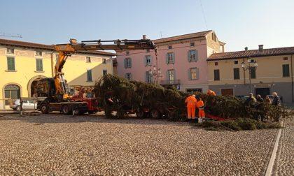 Dalla Val Palot a Rovato, è arrivato l'albero di Natale GALLERY