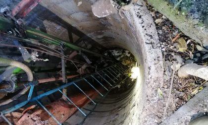 Cane cade in un pozzo, salvato dai Vigili del Fuoco