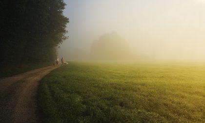 Soleggiato e temperature miti, ma ancora nebbie e foschie | Meteo Lombardia