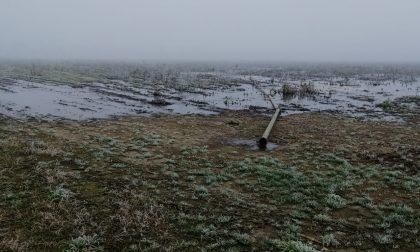 Terreni allagati dal digestato, scattano le indagini