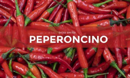 Tutti ortisti: in edicola con il GardaWeek, MontichiariWeek, ManerbioWeek e ChiariWeek i semi di peperoncino