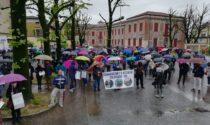 """""""Adesso basta"""": in piazza per manifestare da oltre dieci paesi"""