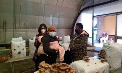 Nasce a Brescia il progetto che sostiene le richiedenti asilo e l'agricoltura biologica