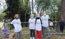 Raccolta firme con il comitato civico «Desenzano più verde»