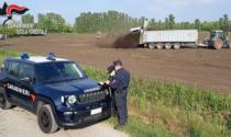 Centocinquantamila tonnellate di fanghi tossici in agricoltura, il fulcro nel Bresciano