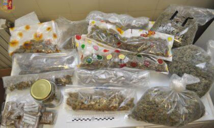 Serra di marijuana in un deposito: arrestati due trafficanti