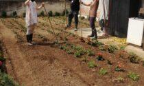 """Apre le porte """"Happy Garden"""", un giardino per aiutare i disabili"""