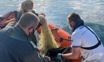Guardia Costiera, sequestrata rete abusiva lunga due chilometri