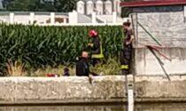 Sub in difficoltà mentre si trova in acqua: salvato dai pompieri
