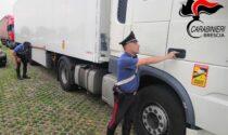Dalla Serbia alla Bassa nascosti in un container: trovati quattro clandestini